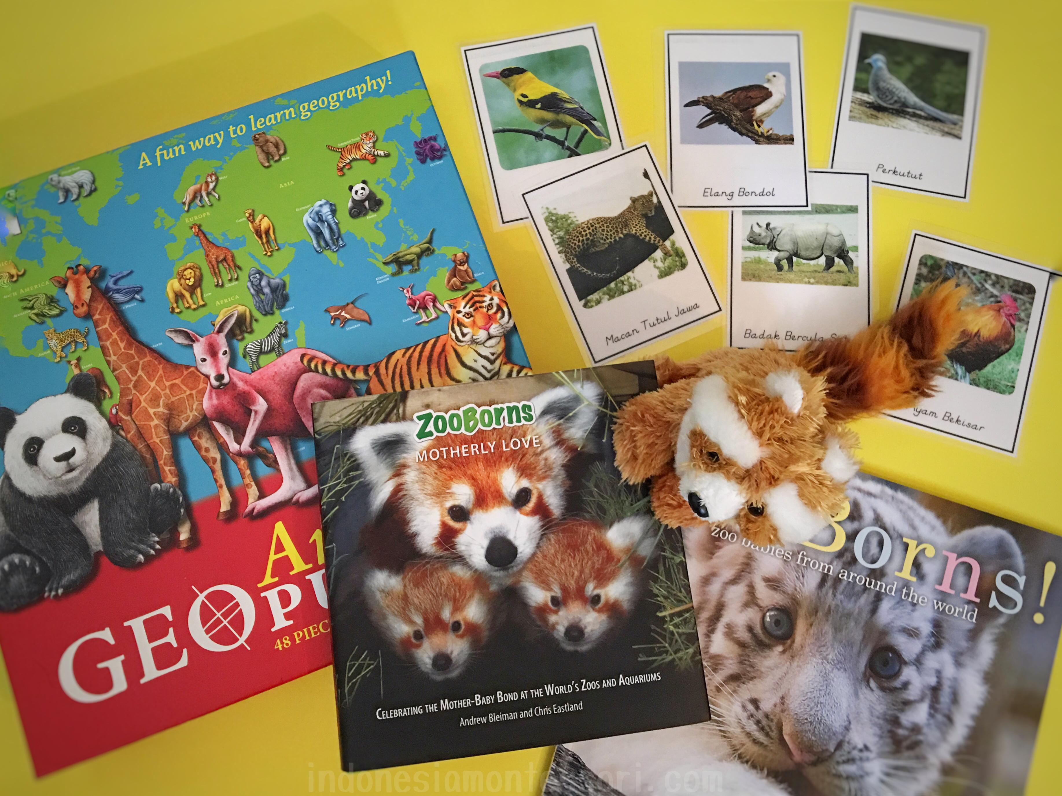 kartu nomenklatur fauna indonesia