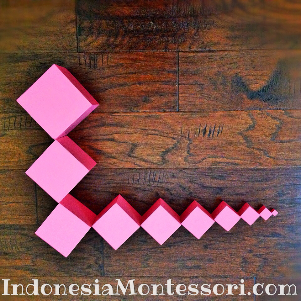 fungsi pink tower montessori