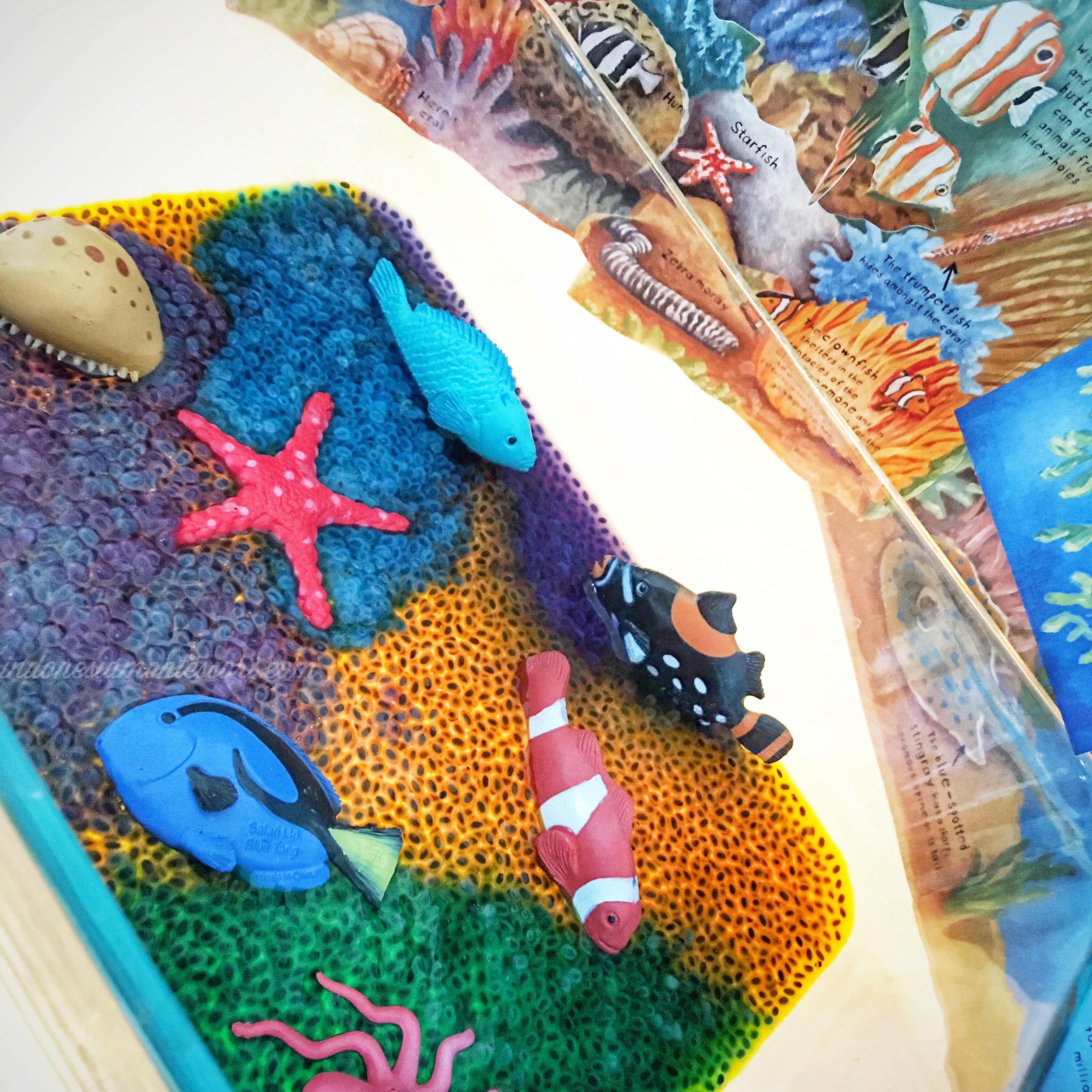 montessori coral reef animal habitat