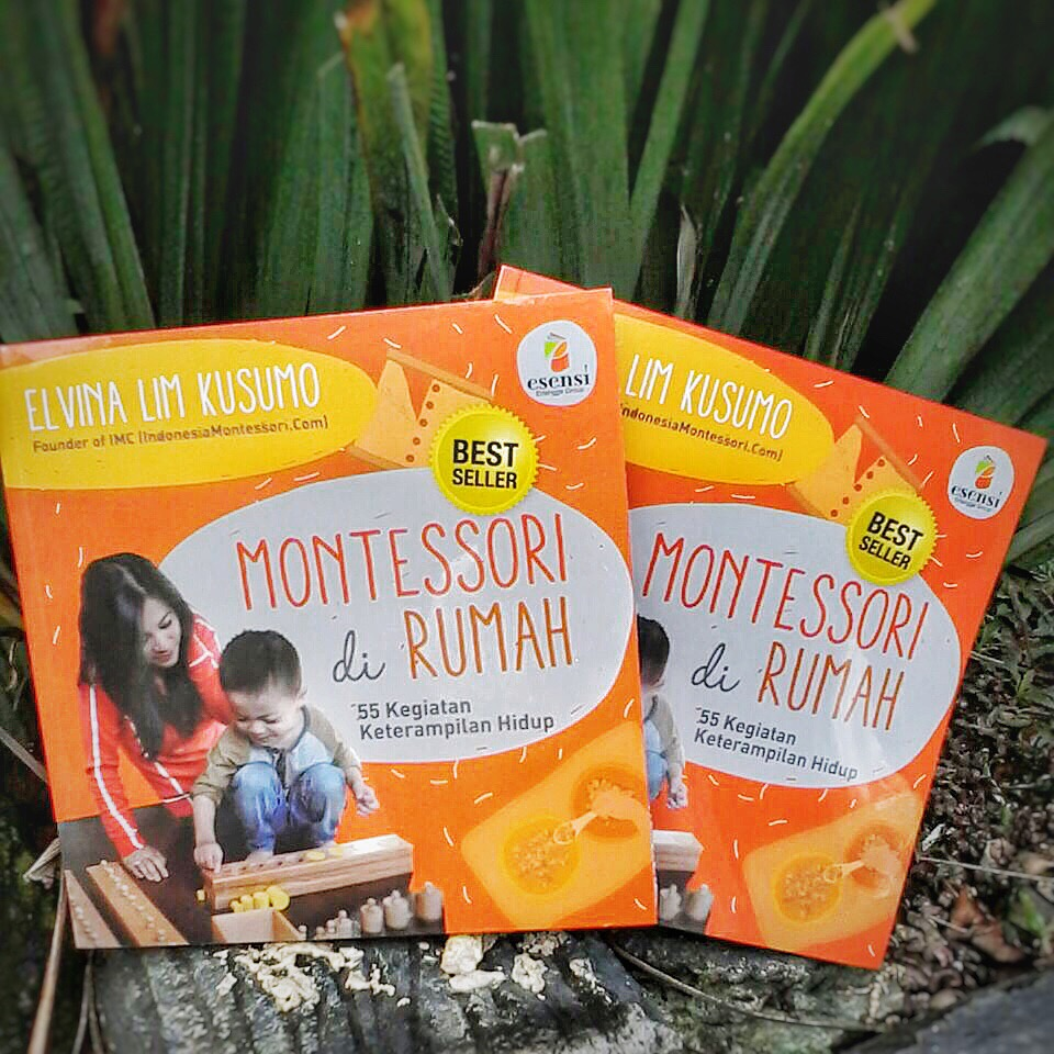 buku montessori di rumah indonesia montessori